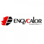 https://www.engycalor.it