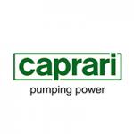 https://www.caprari.it