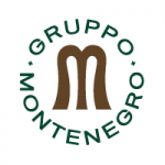 https://gruppomontenegro.com