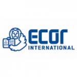 https://www.ecor-international.com